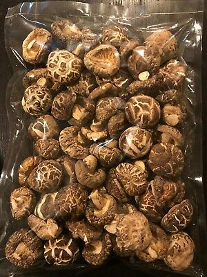 Top Grade Organic Japanesse Dried Shiitake Mushrooms (1 pound) (16 Oz)