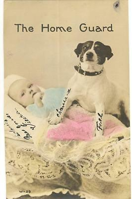 Colored Real photo postcard RPPC black & white dog protecting baby