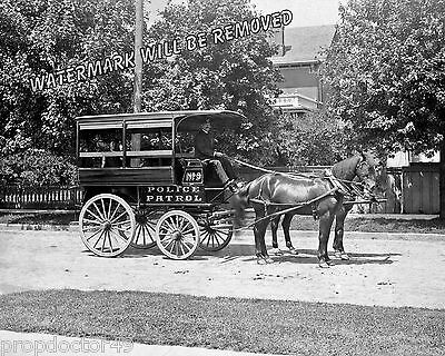 Photograph of a Detroit Police Horse Wagon Patrol Year 1890  8x10