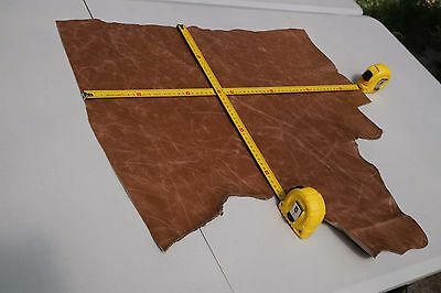 Two tone Brown Cowhide piece/off-cut 62 x 43cm  Semi aniline Cow hide leather