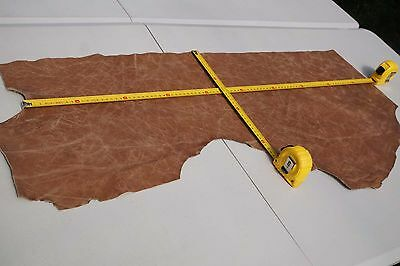 Two tone Brown Cowhide piece/off-cut  95 x 27cm  Semi aniline Cow hide leather