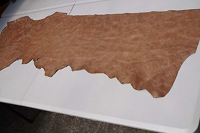 Two tone Brown Cowhide piece/off-cut 142 x 37cm Semi aniline Cow hide leather