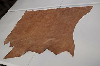 Two tone Brown Cowhide piece/off-cut  70 x 50cm  Semi aniline Cow hide leather