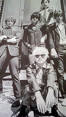 Debbie Harry Blondie 1976 Punk B&W Band Image 28 x 18cm Ideal to Frame