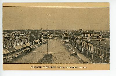 Downtown from City Hall BRODHEAD WI Antique PMC Postcard Horses ca. 1903