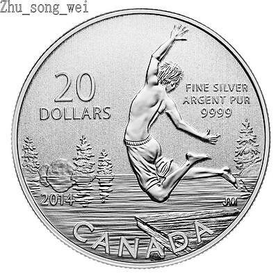 $20 2014 Fine Silver Coin -  Summertime $20 for $20