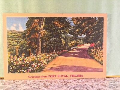 Postcard Greetings From Port Royal, Virginia