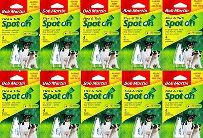 10 TUBES Flea Spot On for Small Medium Large dog  XL Dogs, dog flea treatment