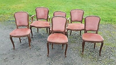 Six louis style french chairs