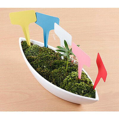 100pcs Plant Shrub Tree T-type Tags Markers Nursery Garden Labels Home