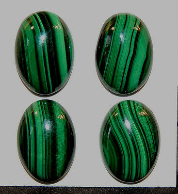Malachite 13x18mm Cabochons with 5mm dome Set of 4 from Africa (11728)