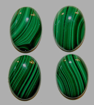 Malachite 13x18mm Cabochons with 5mm dome Set of 4 from Africa (11729)