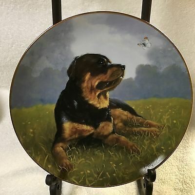 """Rottweiler's """"Afternoon Delight"""" Danbury Mint Plate"""