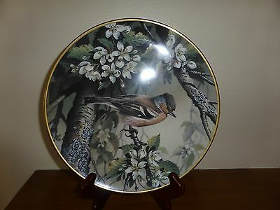 Wedgwood HOUSE CHAFFINCH Collectors Plate RSPB Centenary Collection