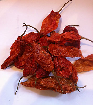 Bhut Jolokia Dried Pods GHOST Chilli - The Hot Pepper Company