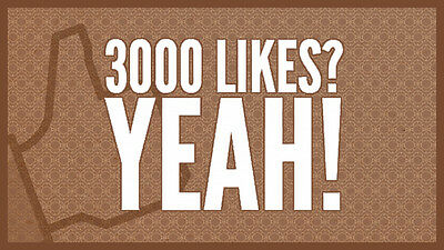 +3000 Facebook fan page like - High Quality Service