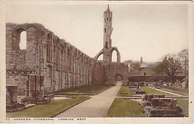 The Cathedral Looking West, ST. ANDREWS, Fife