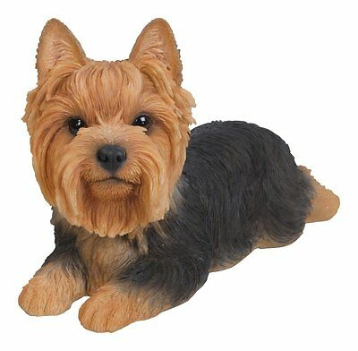 Lying Down YORKSHIRE TERRIER Dog - Life Like Figurine Statue Home / Garden NEW