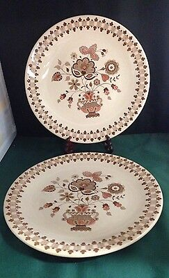 Two Johnson Brothers Pattern Jamestown Brown Dinner Plates