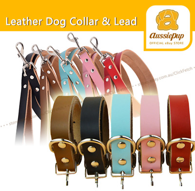 Genuine Leather Dog Collar Matching Lead available Pet Puppy Red Blue Pink Black