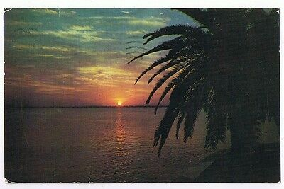 Golden Sunset In Beautiful Southland -  Postcard   # S66442