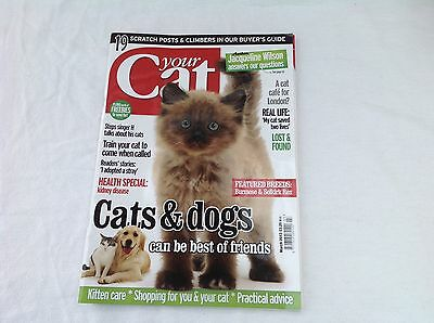 Your  Cat  Magazine     March  2013