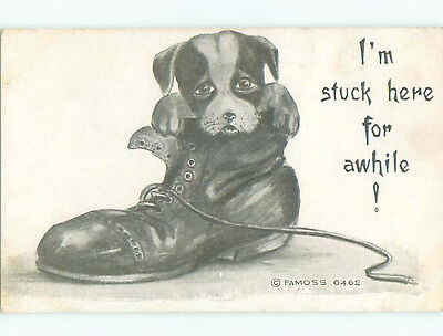 Unused Pre-Linen comic PUPPY DOG INSIDE OLD BOOT k3376