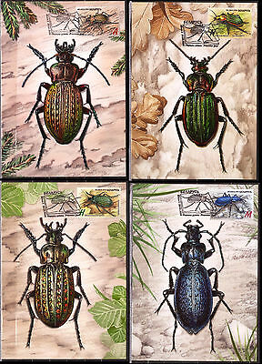 BELARUS 2016 MAXI MAXIMUM CARD INSECTS GROUND BEETLES 4v SET RED BOOK of BELARUS