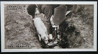 Worcestershire Foxhounds  Vintage 1920's Action Photo Card  VGC / EXC