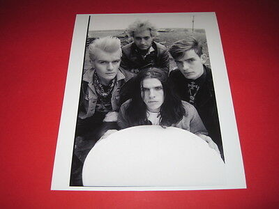THE CULT  10x8 inch lab-printed photo P/8295