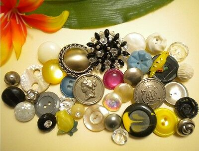 Mixed Button Lot Vintage Picture Metal Glass Realistic Bird Rose Plastic Mop