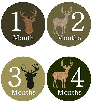 Monthly Baby Sticker Boy, Milestone Stickers, Deer Hunting- #13