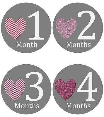Monthly Baby Sticker Girl, Milestone Stickers, Month Stickers, Hearts- #163