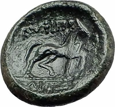 AMPHIPOLIS in Macedonia 146BC RARE R2 Ancient Greek Coin POSEIDON & HORSE i58078