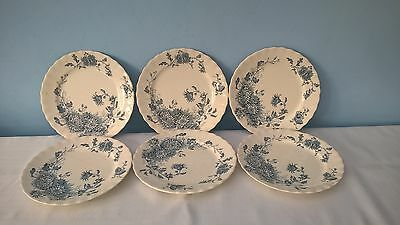 """ANTIQUE 6 x SIDE PLATES LATE MAYERS 1790 KEELING & Co DAISY 8"""" approx"""
