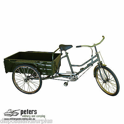 Retro Green Ride On Chinese Tricycle  - Traditional Adults Ride On Rickshaw
