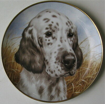 English Setter Limited Edition Collectors Plate Kaiser Germany
