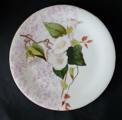 ANTIQUE HAND PAINTED PORCELAIN wall display PLATE VICTORIAN with CONVOLVULUS