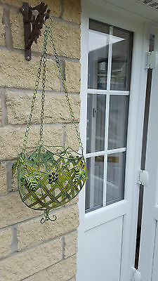 A Stunning Hanging Basket that will take your breath away. The best we have seen
