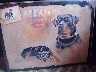 Beautiful sealed unmounted Rottweiler print by Pollyanna Pickering