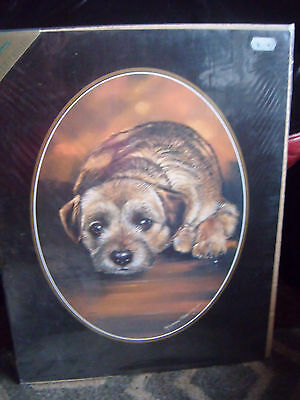 Beautiful sealed unmounted Border Terrier print by Pollyanna Pickering