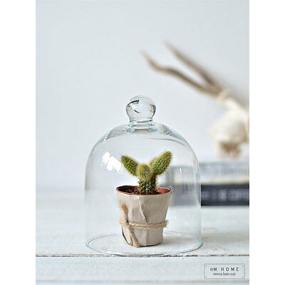 Small Mouth Blown Glass Display Cover Cloche Bell Jar Dome Centrepiece 15 cm
