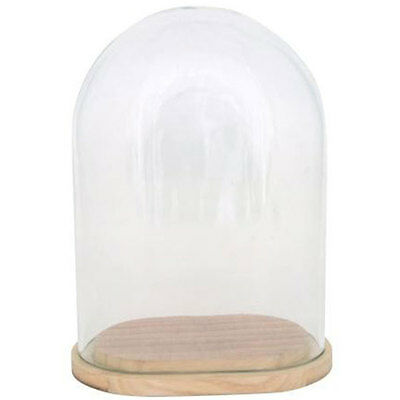 Glass Display Cover / Dome / Cloche oval w/wooden base by Ib Laursen 21 cm