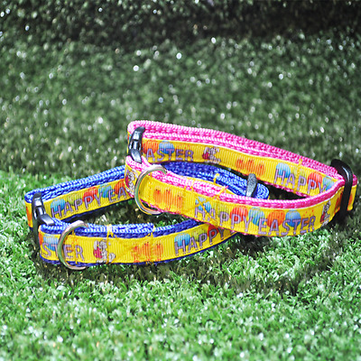 *Easter Egg* Yellow Pink Blue *Easter Bunny* Cat Kitten Puppy Small Dog Collar