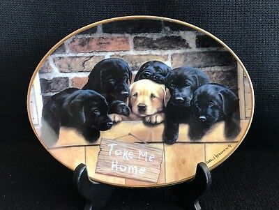 Franklin Mint Labradors Take Me Home Plate Nigel Hemming Limited Edition
