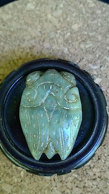 Jade Nephrite Finely Carved Green Cicada Oval Amulet Pendant.