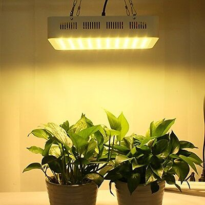 Roleadro Upgrade and Newly Developed LED Grow Light Full Spectrum 2nd Generation