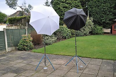 Studio lighting Courtney two-lamp kit with stands, umbrellas and cabling