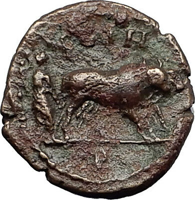 COMMODUS 188AD Parium Mysia Priest Plows Oxen RARE Ancient Roman Coin i58431