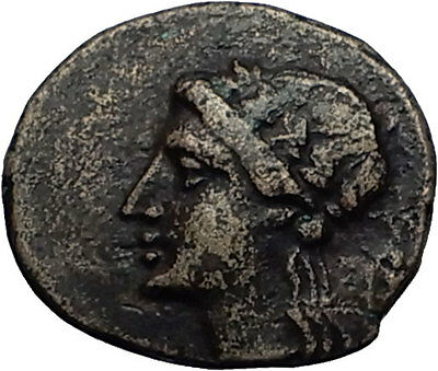 THOURIOI in LUCANIA 280BC Apollo Cornucopia Authentic Ancient Greek Coin i58661